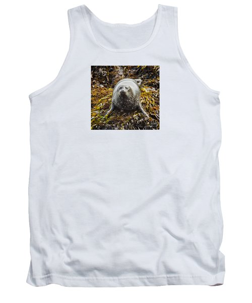 Harbor Seal Tank Top by Alice Cahill