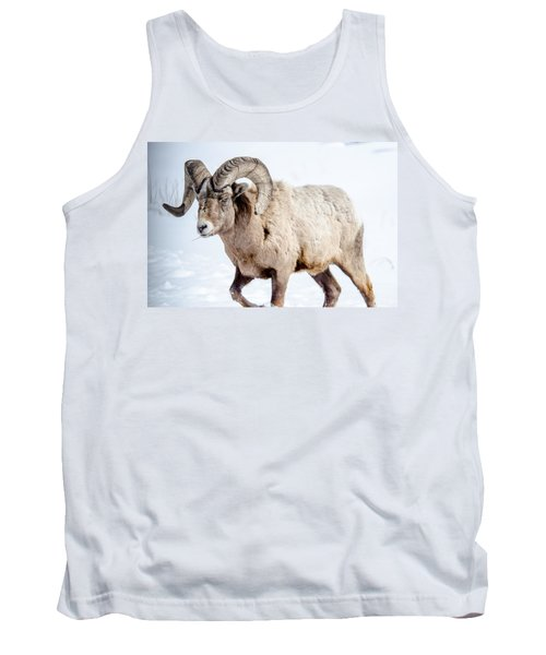Big Horns On This Big Horn Sheep Tank Top