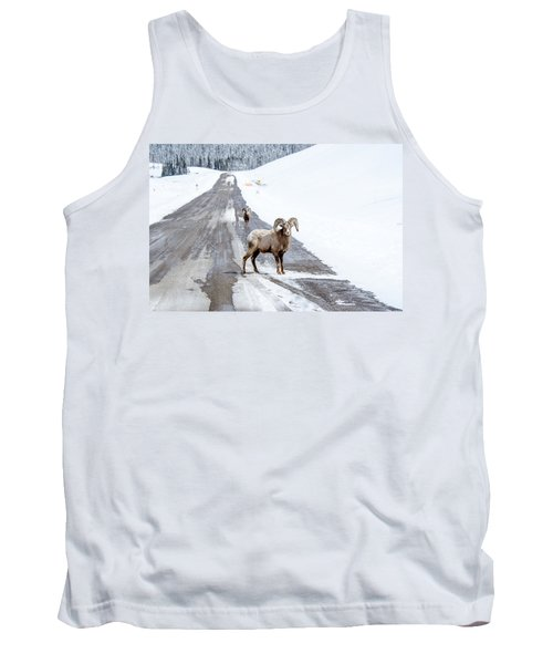 On The Road Again Big Horn Sheep  Tank Top