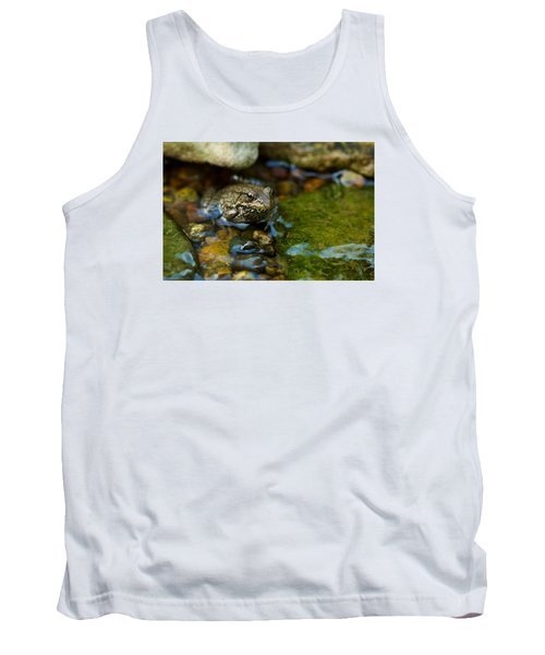 Tank Top featuring the photograph Is There A Prince In There? - Frog On Rocks by Jane Eleanor Nicholas