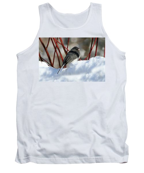 January Snow In New England Tank Top by Barbara S Nickerson