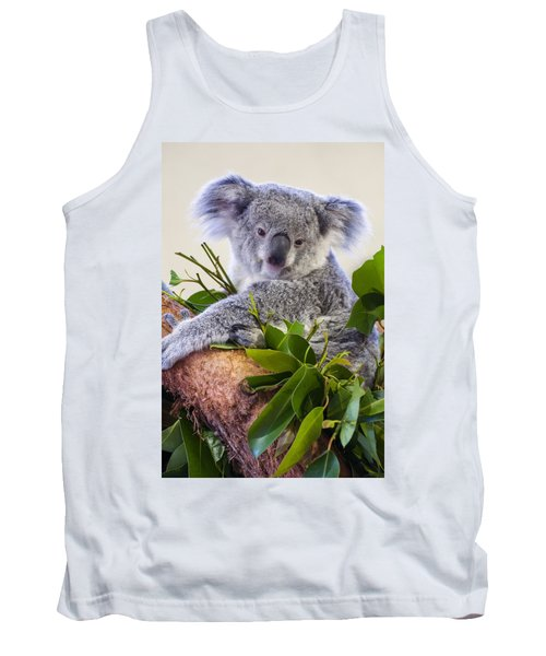 Koala On Top Of A Tree Tank Top by Chris Flees