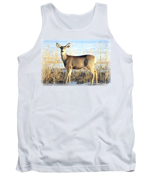 Tank Top featuring the photograph Lonesome Doe Sunset by Barbara Chichester