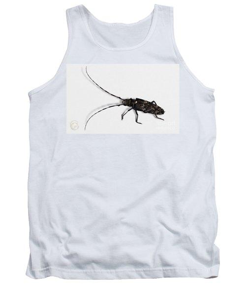 Long-hornded Wood Boring Beetle Monochamus Sartor - Coleoptere Monochame Tailleur - Tank Top