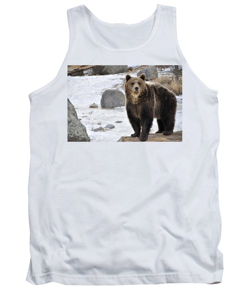 Montana Grizzly  Tank Top