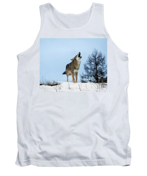 Tank Top featuring the photograph Morning Howl by Jack Bell