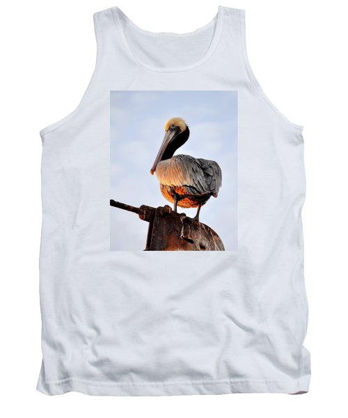 Pelican Looking Back Tank Top by AJ  Schibig
