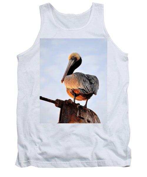 Pelican Looking Back Tank Top