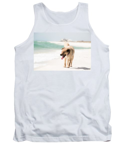 Play Buddy Tank Top by Shelby  Young