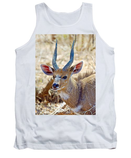 Portrait Of A Bushbuck In Kruger National Park-south Africa  Tank Top