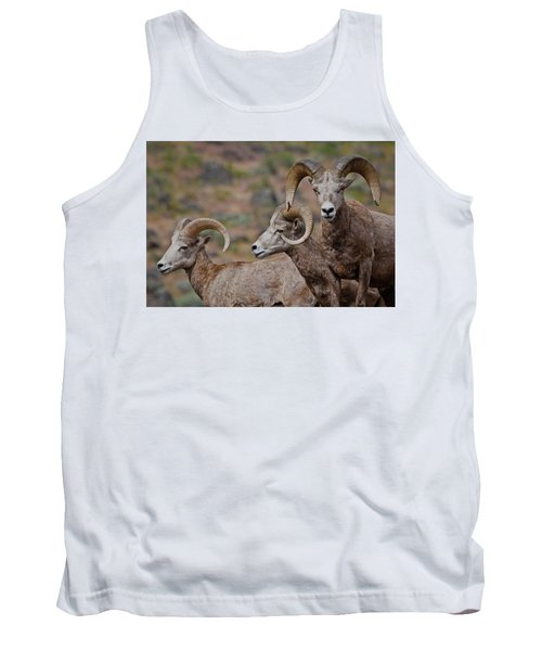 Rams In Three Tank Top
