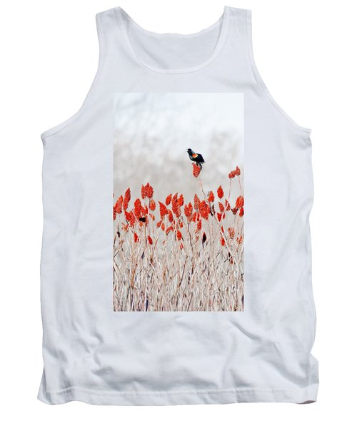 Red Winged Blackbird On Sumac Tank Top