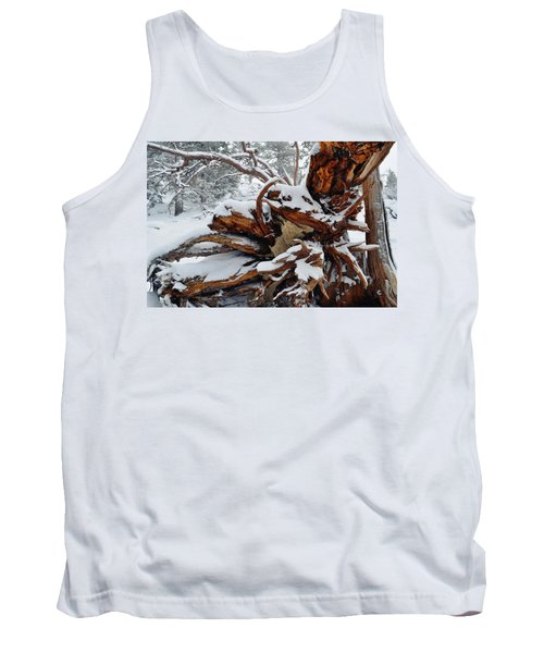 Tank Top featuring the photograph San Jacinto Fallen Tree by Kyle Hanson