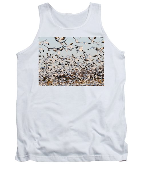 Snow Geese Takeoff From Farmers Corn Field. Tank Top