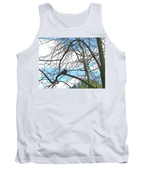 Tank Top featuring the photograph Squirrel Maze by Pamela Hyde Wilson