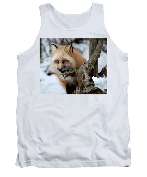 Stunning Sierra Tank Top by Richard Bryce and Family