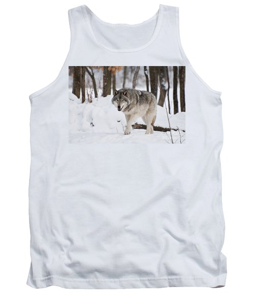 Tank Top featuring the photograph Timber Wolf In Winter Forest by Wolves Only