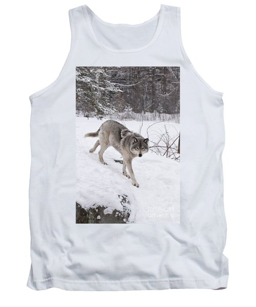 Tank Top featuring the photograph Timber Wolf  by Wolves Only