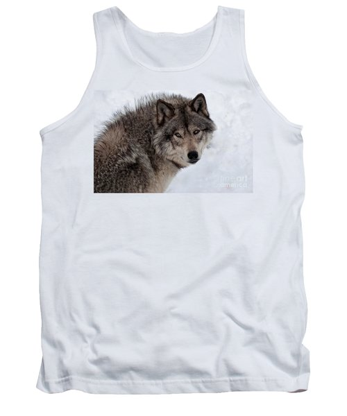 Tank Top featuring the photograph Timberwolf At Rest by Bianca Nadeau