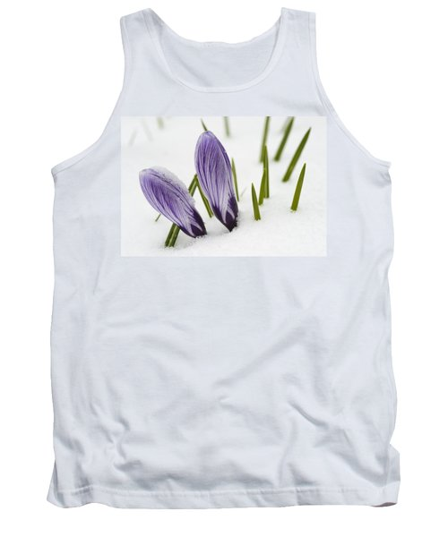Two Purple Crocuses In Spring With Snow Tank Top