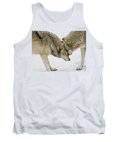 Two Wolves In  A Staredown Tank Top by Gary Slawsky