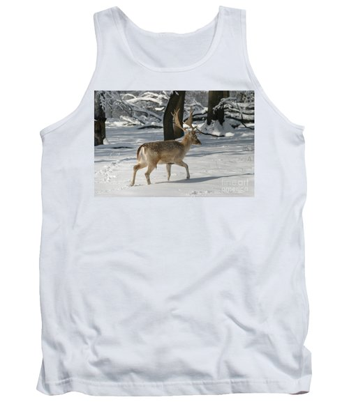 Winter Walk Tank Top by Living Color Photography Lorraine Lynch