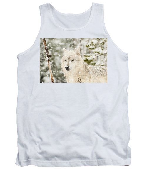 Wolf In Snow Tank Top