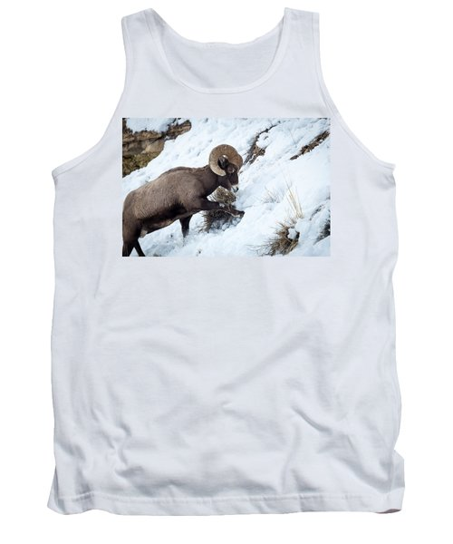 Yellowstone Bighorn Tank Top