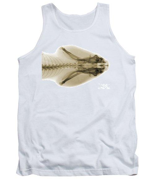 Eastern Diamondback Rattlesnake Head Tank Top by Ted Kinsman