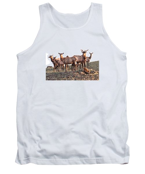 Early Morning Herd Tank Top by CR  Courson