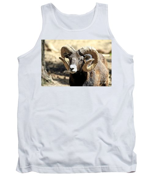 European Big Horn - Mouflon Ram Tank Top by Teresa Zieba