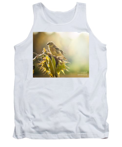 Tank Top featuring the photograph Finch Aglow by Cheryl Baxter