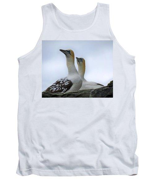 Gannets Tank Top by Lynn Bolt