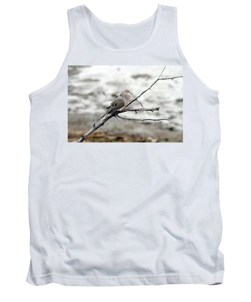Tank Top featuring the photograph Good Morning Dove by Elizabeth Winter