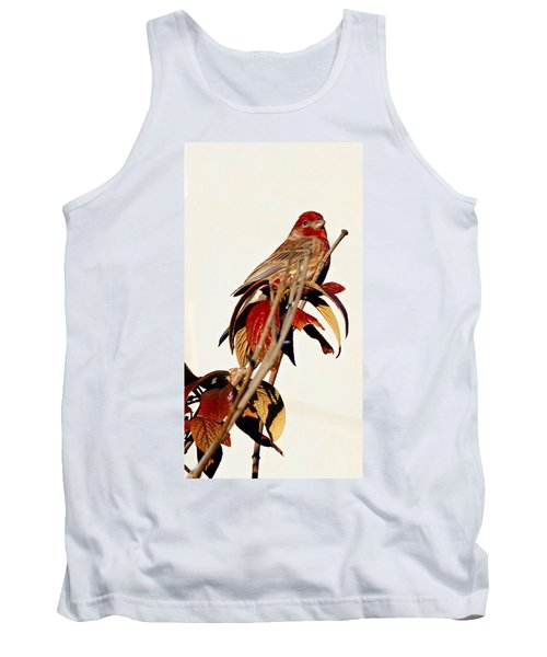 Tank Top featuring the photograph House Finch Perch by Elizabeth Winter