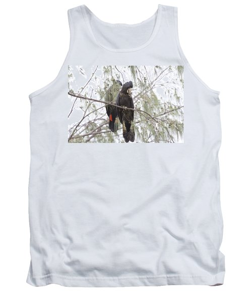 Red Tailed Black Cockatoos Tank Top