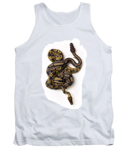 Two Ball Python Snakes Intertwined Tank Top by Corey Hochachka