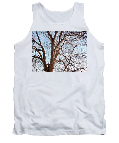 Tank Top featuring the photograph Winter Sunlight On Tree  by Chalet Roome-Rigdon