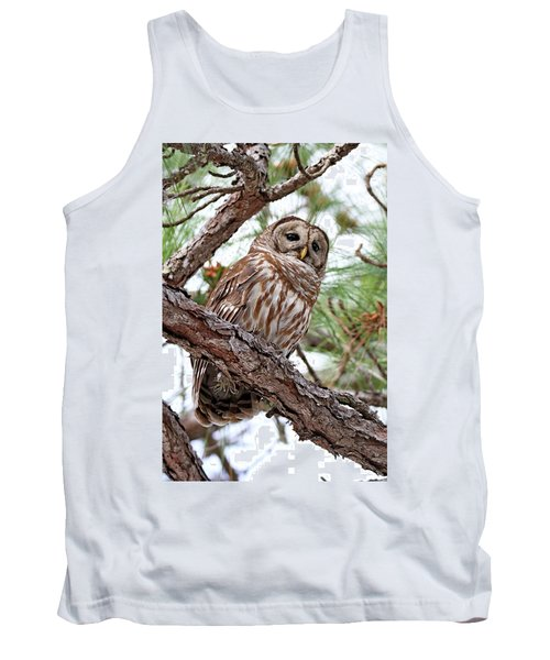 Barred Owl In Pine Tree Tank Top