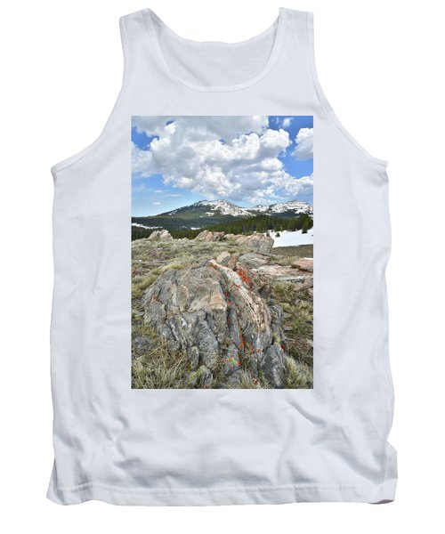 Big Horn Pass In Wyoming Tank Top
