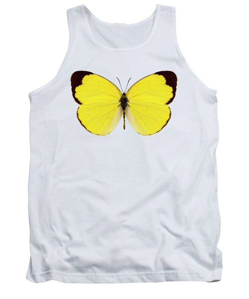 Butterfly Species Eurema Alitha  Tank Top