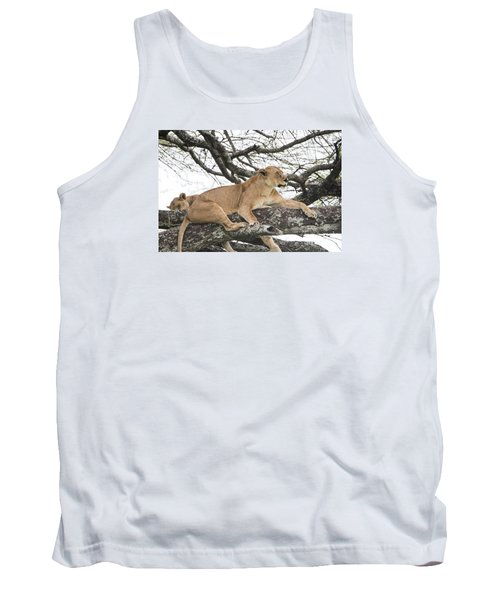 Lions In A Tree Tank Top