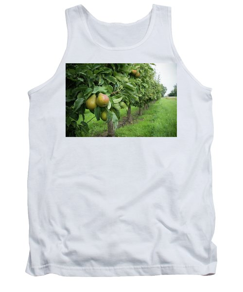 Pear Orchard Tank Top by Hans Engbers