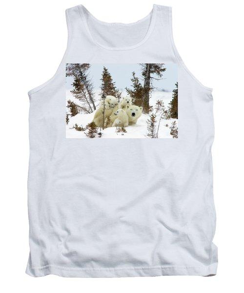 Polar Bear Ursus Maritimus Trio Tank Top