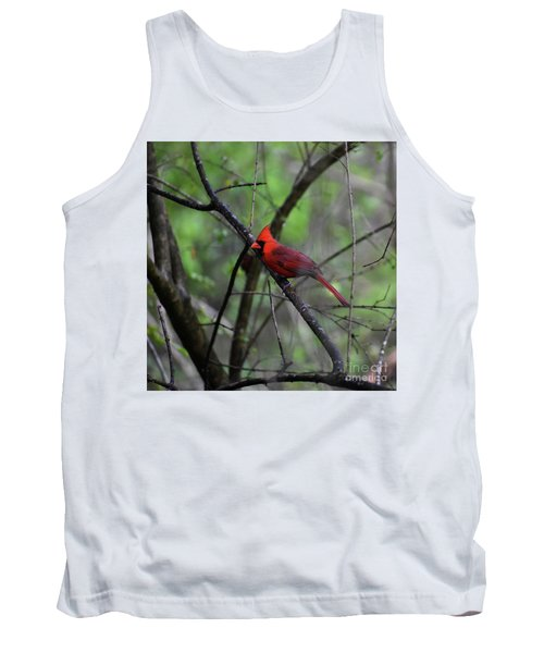 Tank Top featuring the photograph Saint Louis by Skip Willits