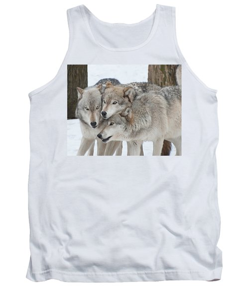 Three Wolves Are A Crowd Tank Top by Gary Slawsky
