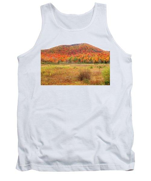 Vermont Foliage 1 Tank Top