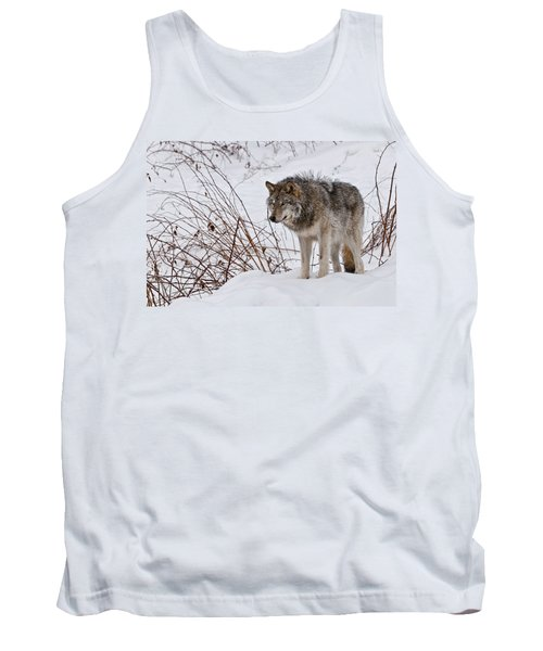 Tank Top featuring the photograph Timber Wolf In Winter by Michael Cummings
