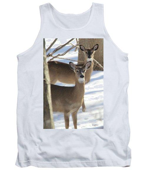 White Tailed Deer Smithtown New York Tank Top by Bob Savage