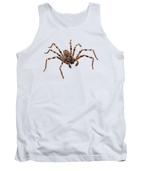 Wolf Spider Lycosa Sp Tank Top